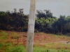 Hectares of Land belonging to Mr. Daniel Obah, located at Ase Ndoni Village, Ogba/Egbema/Ndoni LGA, Rivers State.